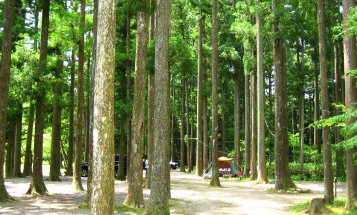 板取川温泉オートキャンプ場トップ
