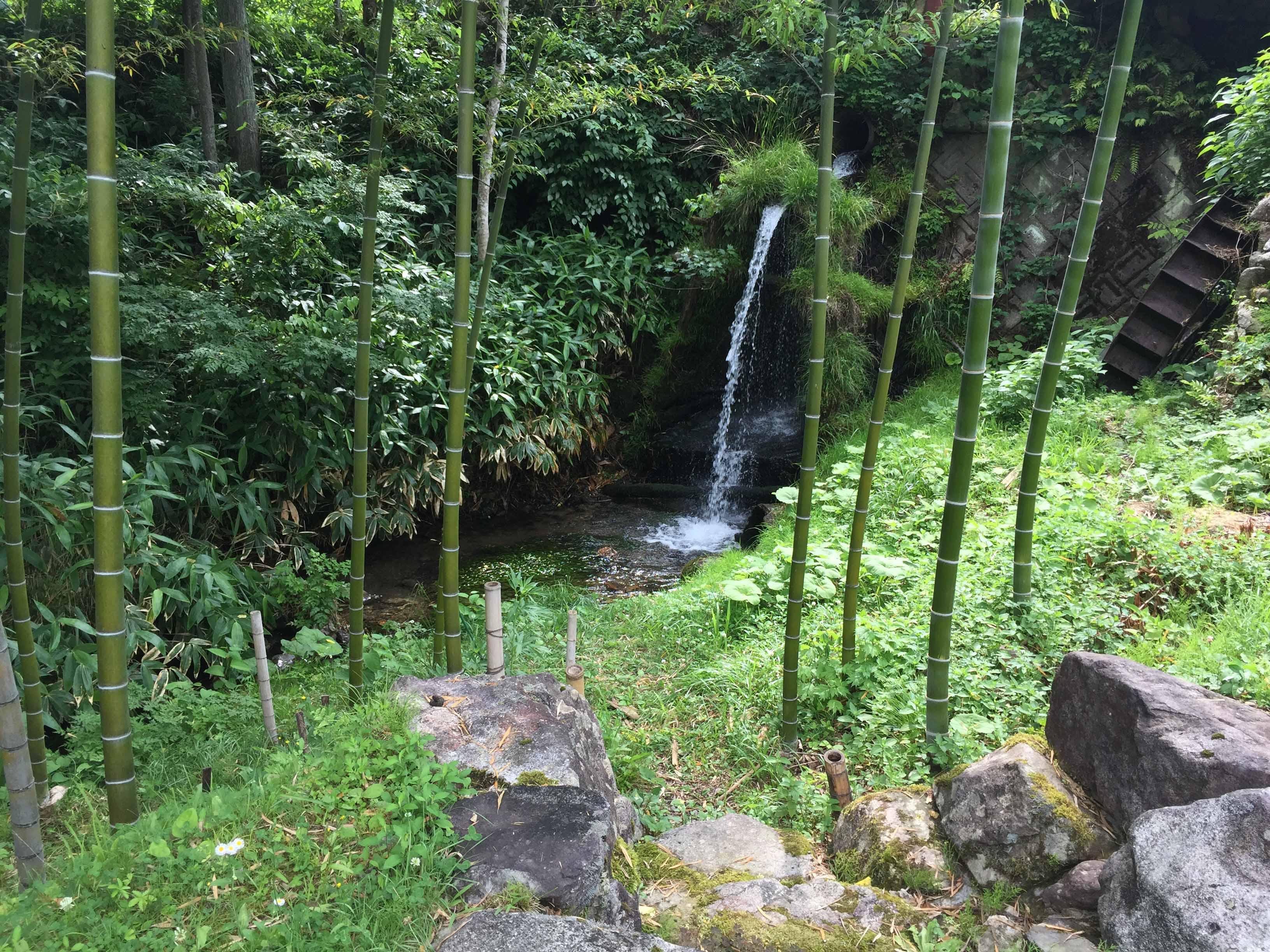 おもだか庭の滝