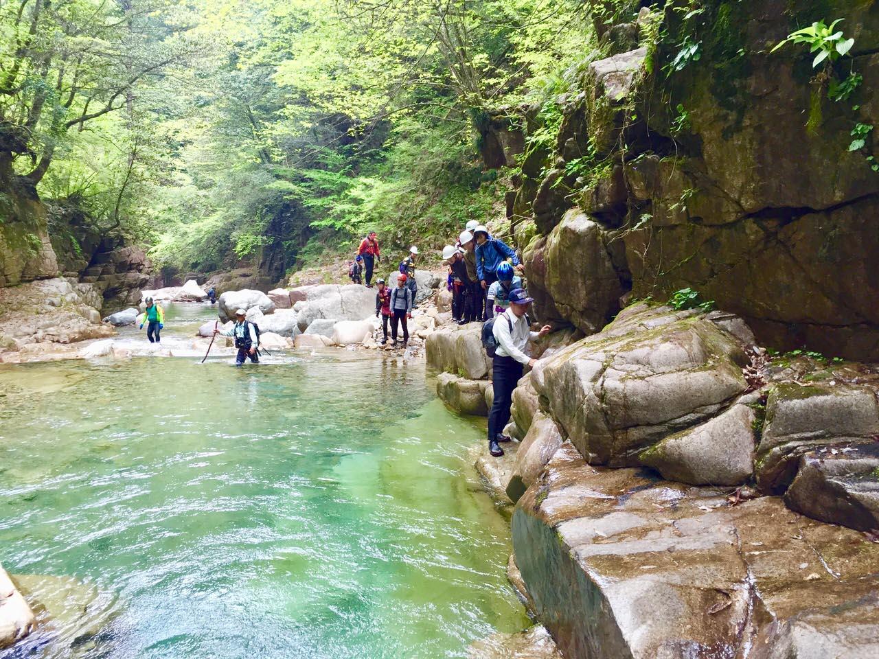 西ヶ洞の自然